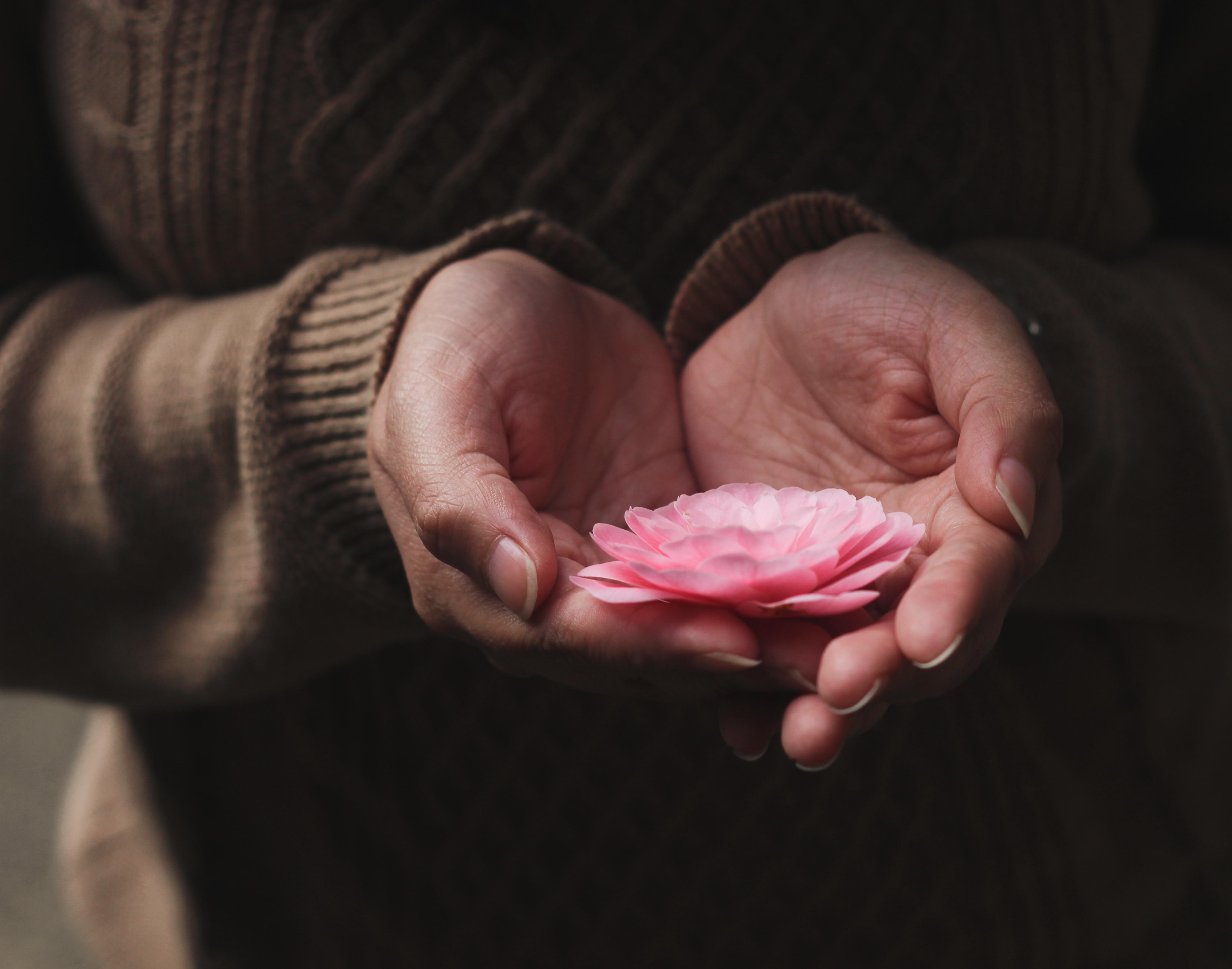 handen met bloem