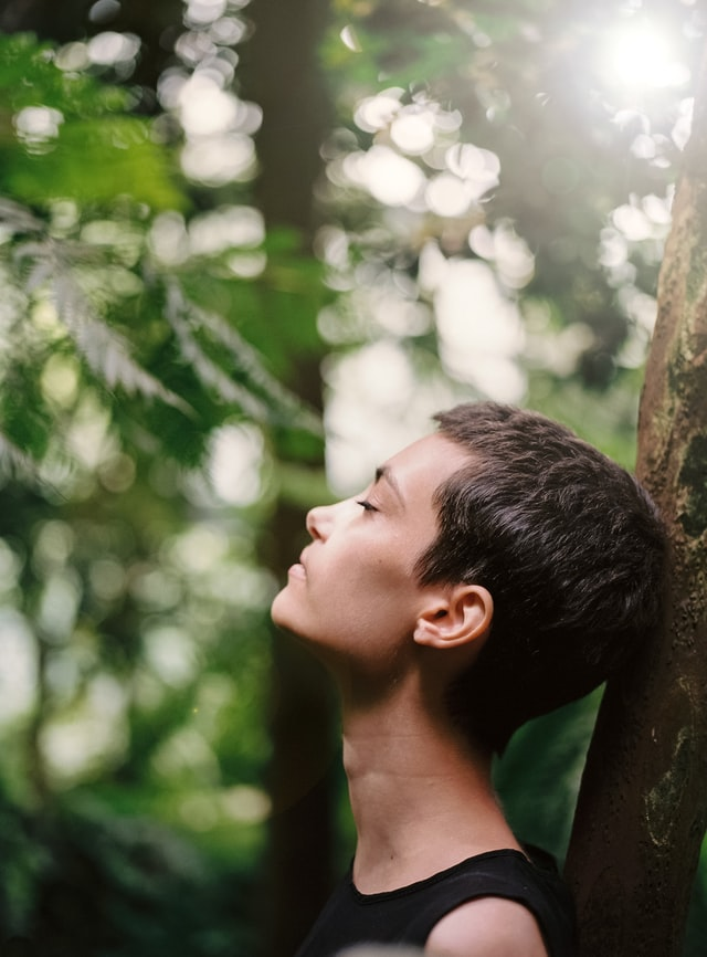 diep in ademen in bos