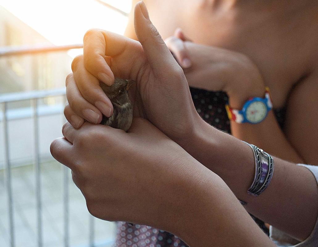 voorzichtig vogeltje vasthouden. Compassie voor ijzersterke communicatie als co-ouder